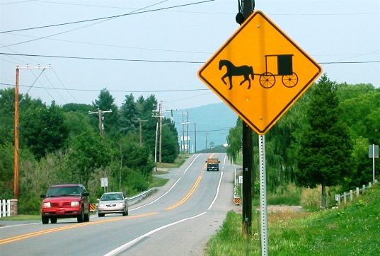 buggy sign elizabethville pa