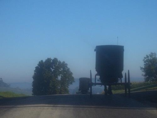 buggy-traveling-to-ohio-amish-church