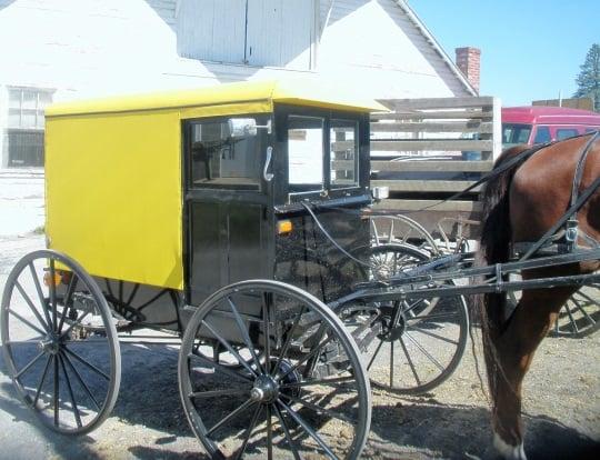 byler-amish-buggy-at-belleville-penn
