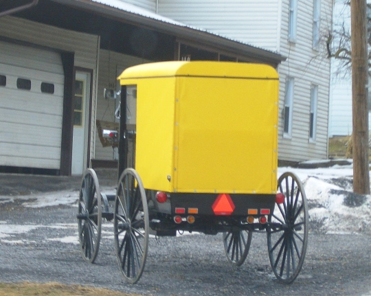Byler Amish Buggy
