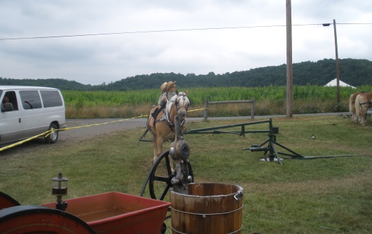 children-riding-perry-co-pa