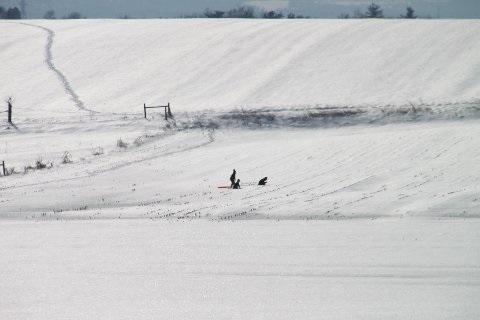 children-sledding