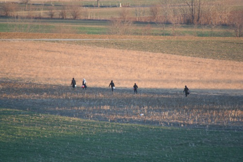 Children Traversing Field