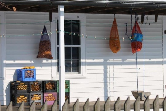 clothes-pins-on-porch
