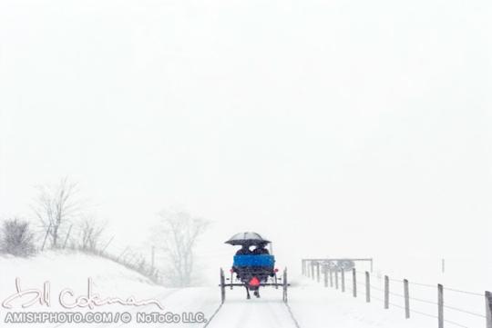 coleman-umbrella-snow-buggy