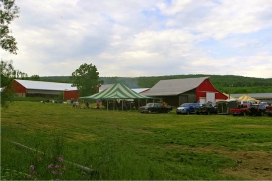 Conewango NY Amish Auction