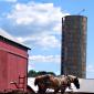 Connecticut Amish Beds