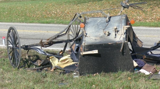Three Children Killed In Michigan Buggy Crash