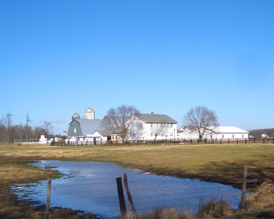 dover amish pond farm