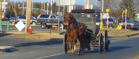 Dover DE Amish