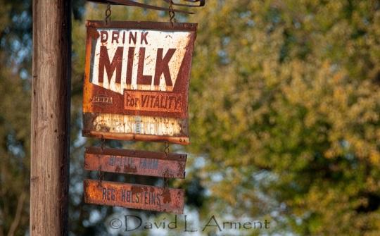 drink-milk-for-vitality