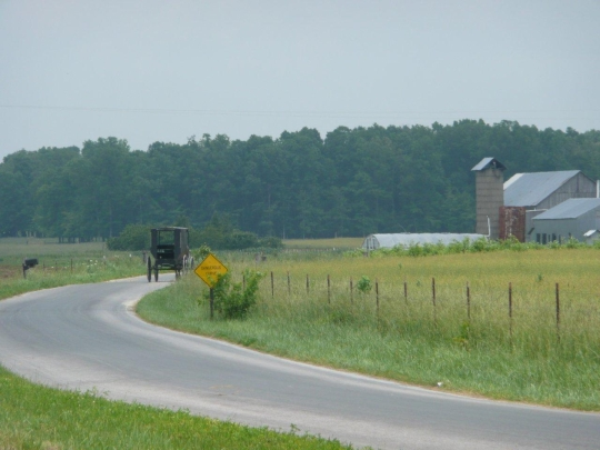 ethridge tn amish buggy