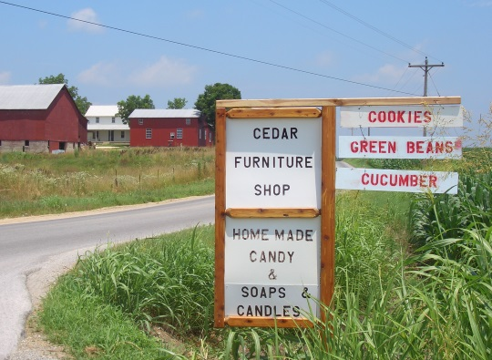 ethridge-tn-amish-community-business-signs