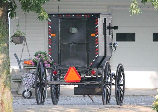 Eye-catching Amish Buggy