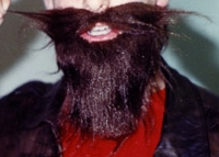 fake beard championships