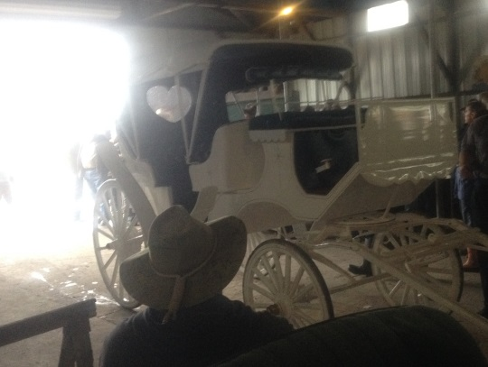 fancy-white-carriage