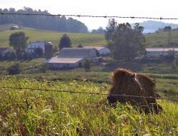 Farm Holmes County Amish Community
