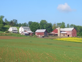 farmstead-amish-ohio-hills