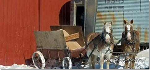feed-wagon-amish-missouri