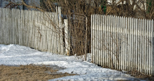 fence-gate-kalona