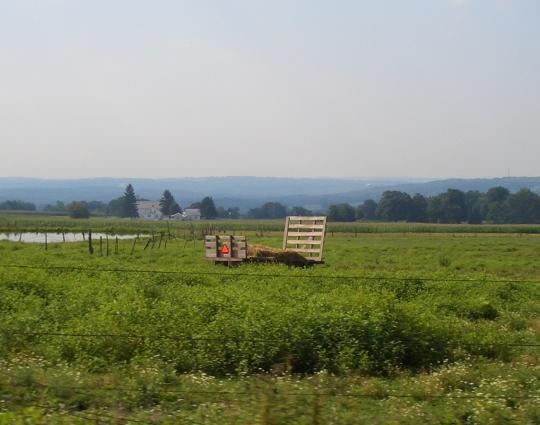 field-new-wilmington-pa