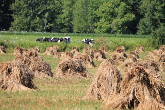 Geauga County Farming