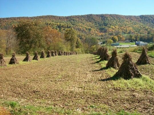 The Amish Of Pearisburg Virginia