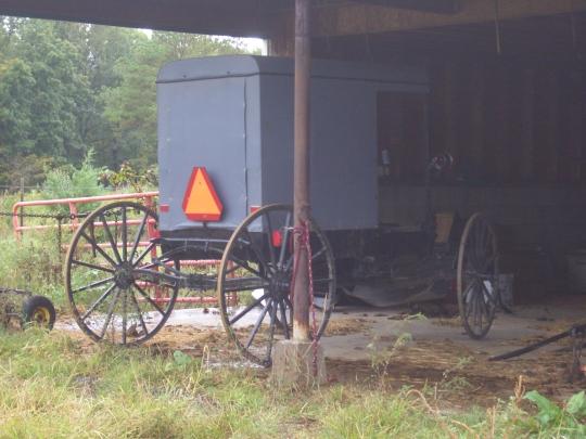 gray amish buggy
