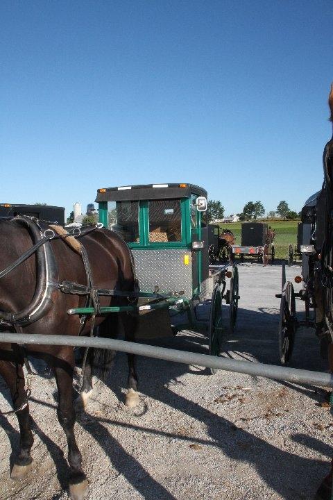 green-buggy