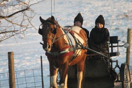Happy Amish Boys