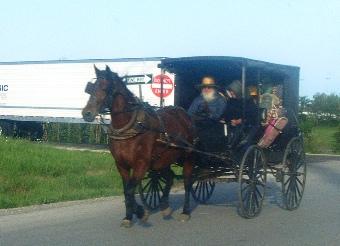 hardin county kentucky amish