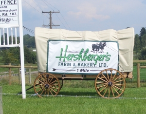 Hershbergers Amish Bakery