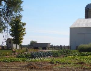Hicksville Amish Church