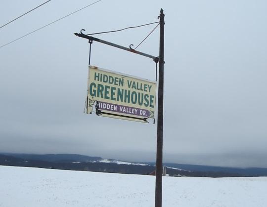 hidden-valley-greenhouse-somerset