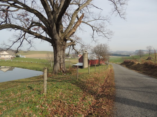 holmes-county-road-december