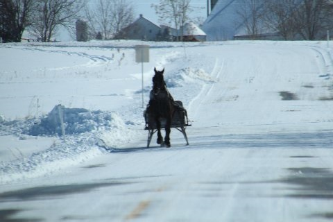 horse-drawn-sleigh-amish-lancaster