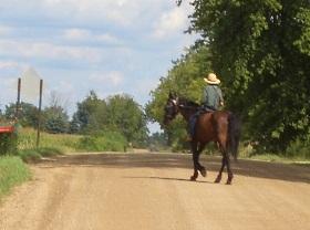 horse-rider-michigan