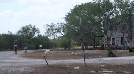 horseback-amish-texas