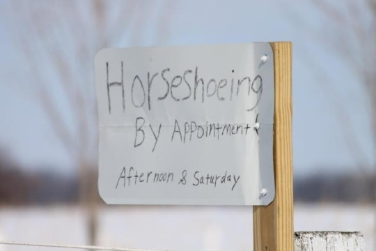 Horseshoeing By Appointment