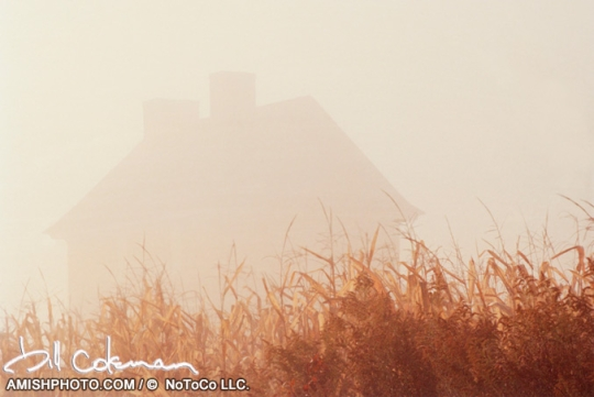 house-in-mist