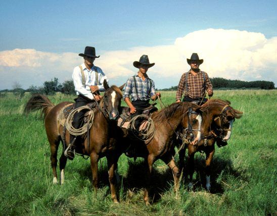 "The ""Amish community"""