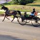 Idaho Amish Beds