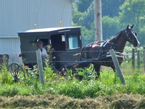 indiana amish favorite places