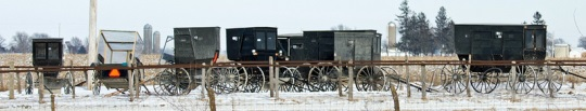 iowa-amish-buggies