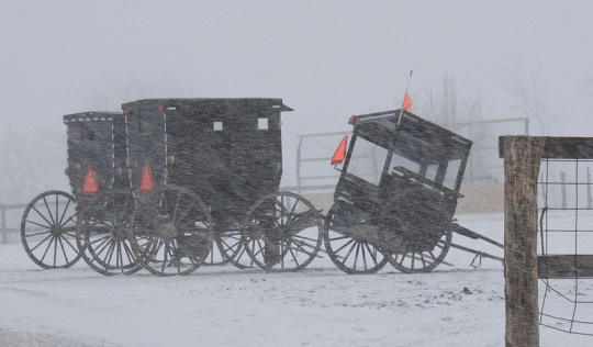 jamesport-mo-amish-buggies