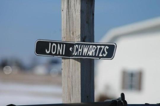joni-schwartz