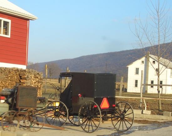 juniata county amish buggy