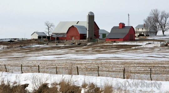 kalona-amish-farm