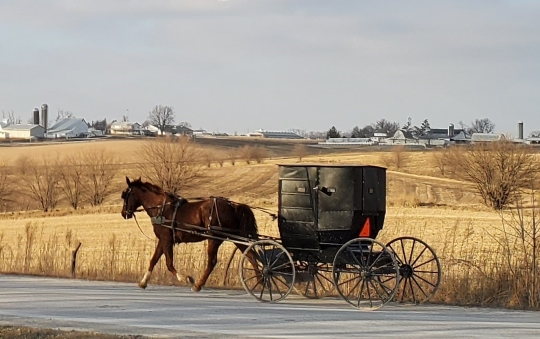 Visiting Kalona, Iowa: The Town & Amish Community (23 Photos)