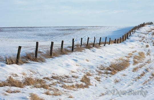 kalona-fence